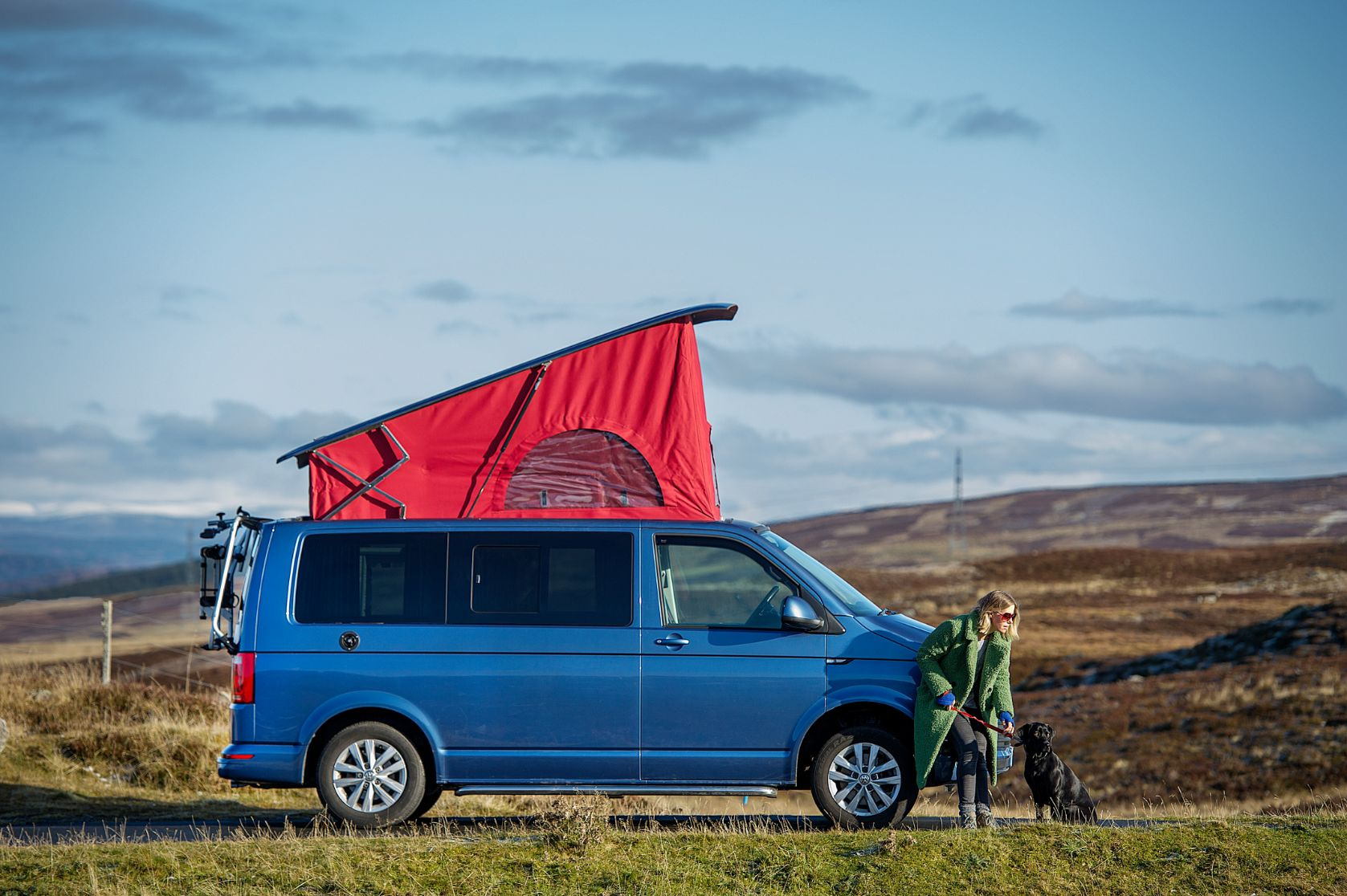 Lady and dog with Blue Volkswagen Transporter T6 - Campervan